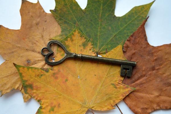 montage-clef-et-feuille-arbre